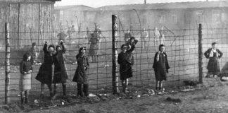 ziua-internationala-de-comemorare-a-holocaustului